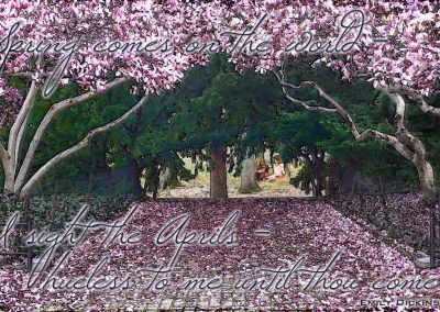 Vincent and Catherine having a picnic in Central Park in the spring when the magnolias are in bloom. Text reads: Spring comes on the world. I sight the Aprils, hueless to me until thoug come. Emily Dickinson