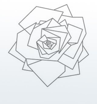 a drawing of a rose in bloom