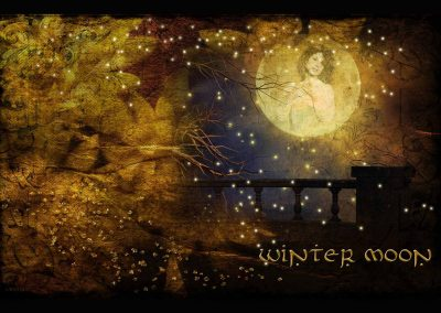 WFOL 2014 wallpaper, a vision of Catherine in the full moon, a starry balcony. Text reads: Winter Moon