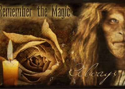 2014 WFOL wallpaper, a visage of Vincent, a rose, stars and snowflakes. Text reads: Winterfest, remember the magic always