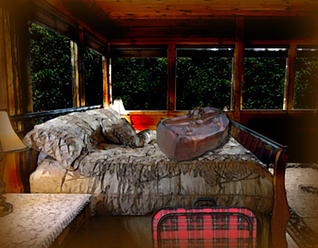 The cabin bedroom, with Vincent's valise on the bed and Catherine's suitcase on the floor