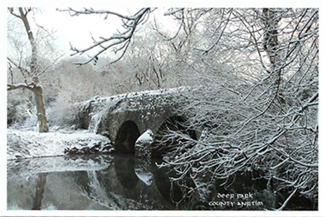 a postcard from snowy Deer Park in County Antrim